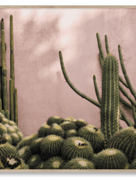 Paper Collective 'Plants on pink' Julie Pike 50x70