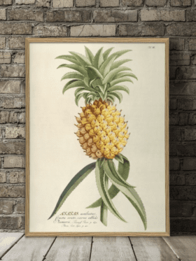Dybdahl Co Plantae Print Ananas Yellow #3700