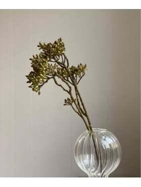 Mr. Plant Kvist 40cm