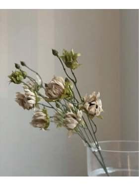 Mr. Plant Solros 65 cm
