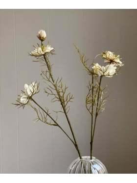 Mr. Plant Nigella 55 cm