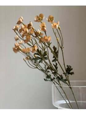 Mr. Plant Smørblomst 65 cm